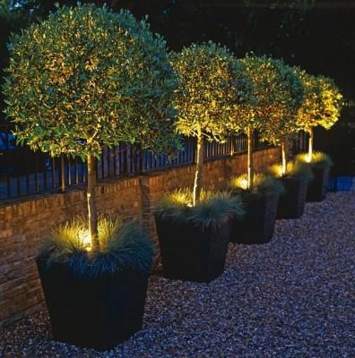 Interessant STRAHLEND: Mit Bodeneinbaustrahlern leuchtet der Garten DP02